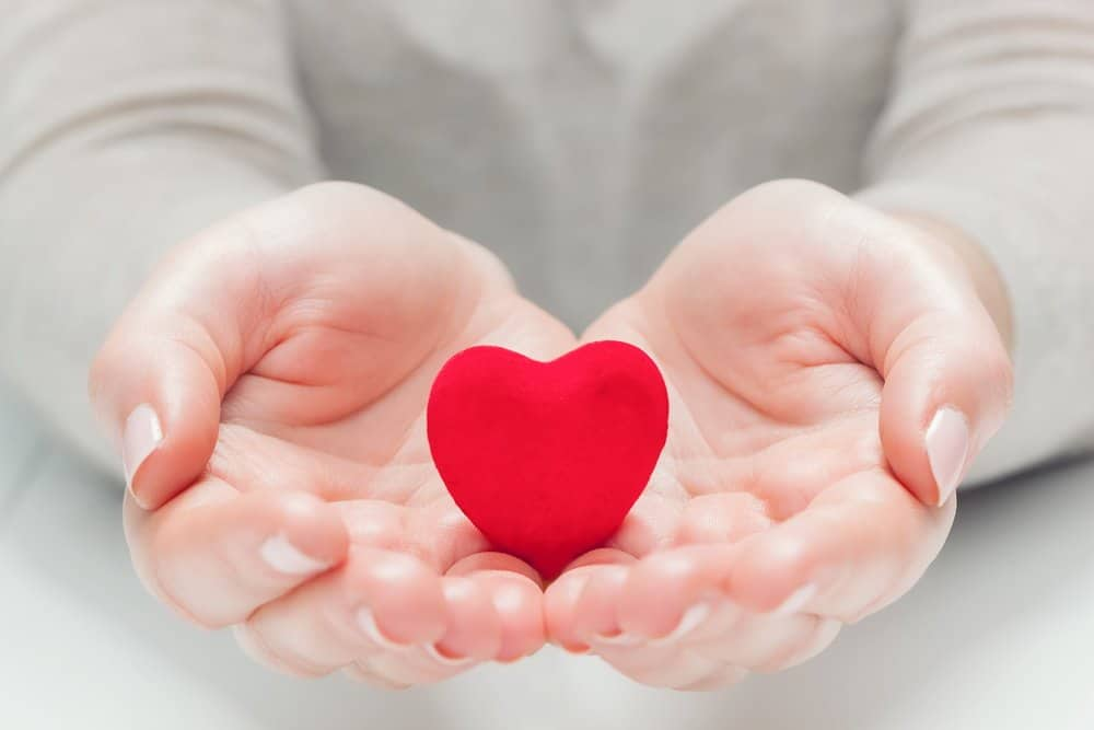Small red heart in woman's hands in a gesture of giving, protecting. Health, life, love symbol - HIIT for Weight Loss Training