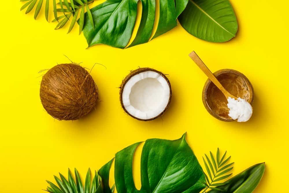 Coconut oil, tropical leaves and fresh coconuts, flat lay, healthy life concept - Diet Smoothies for Weight Loss