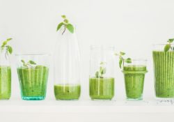 Matcha green vegan smoothie with chia seeds and mint in glasses and bottles, white background. Clean eating, detox, alkaline diet, weight loss food concept - Diet Smoothies for Weight Loss