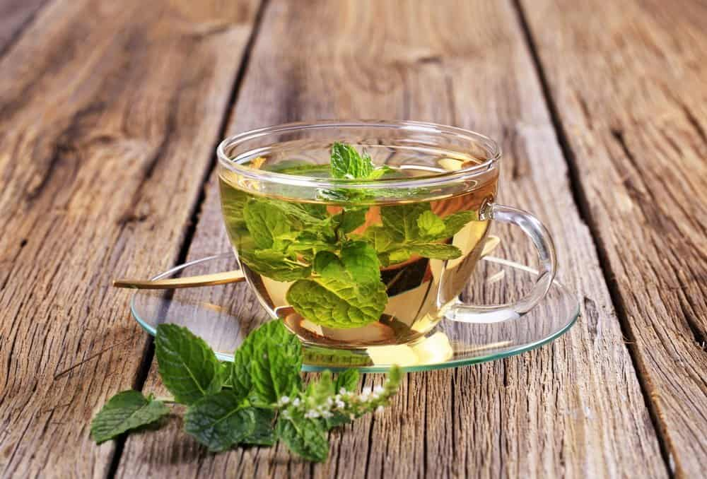 Mint tea made of fresh mint leaves - Organifi Green Drink Review