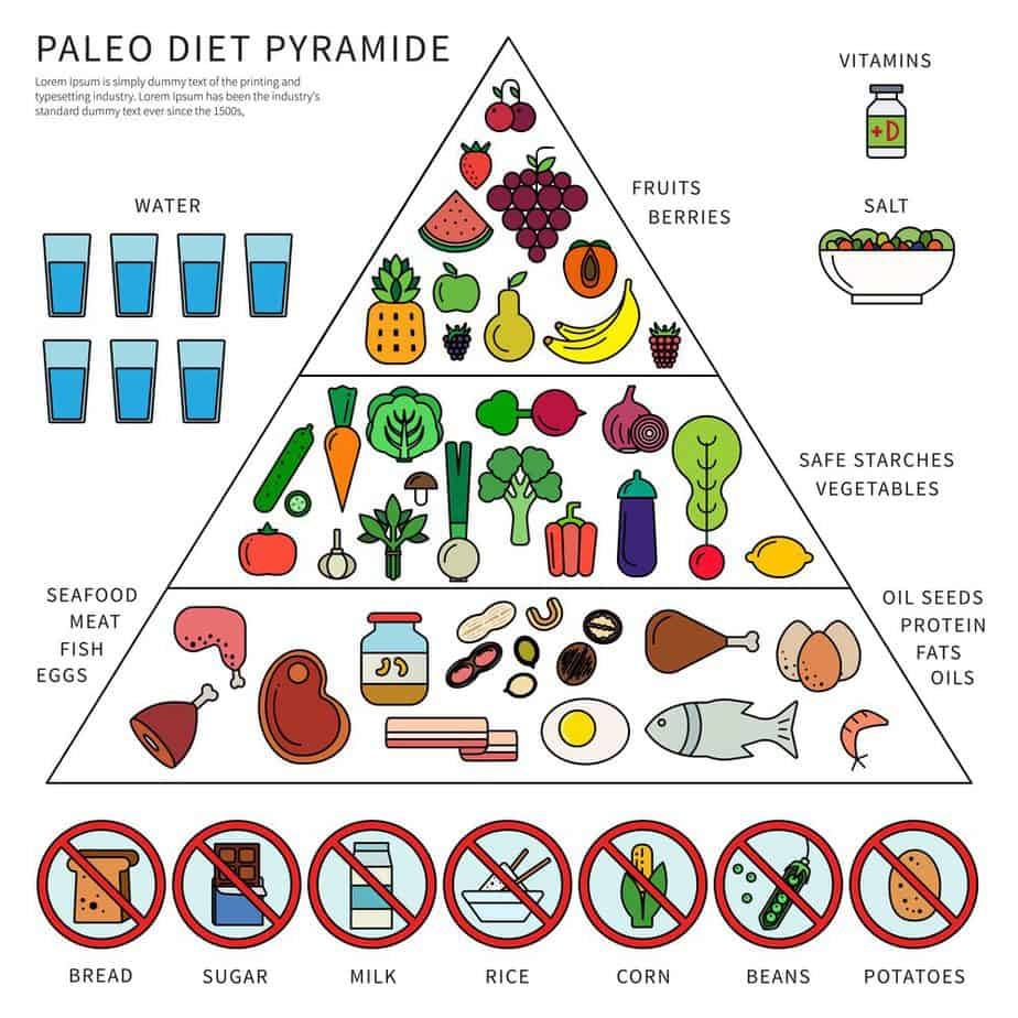 Thin line flat design of the pyramid of Paleo diet explained
