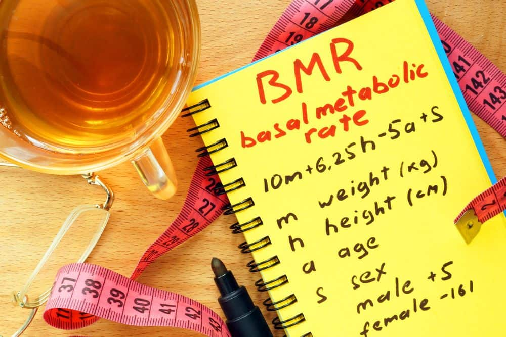BMR basal metabolic rate calculation formula