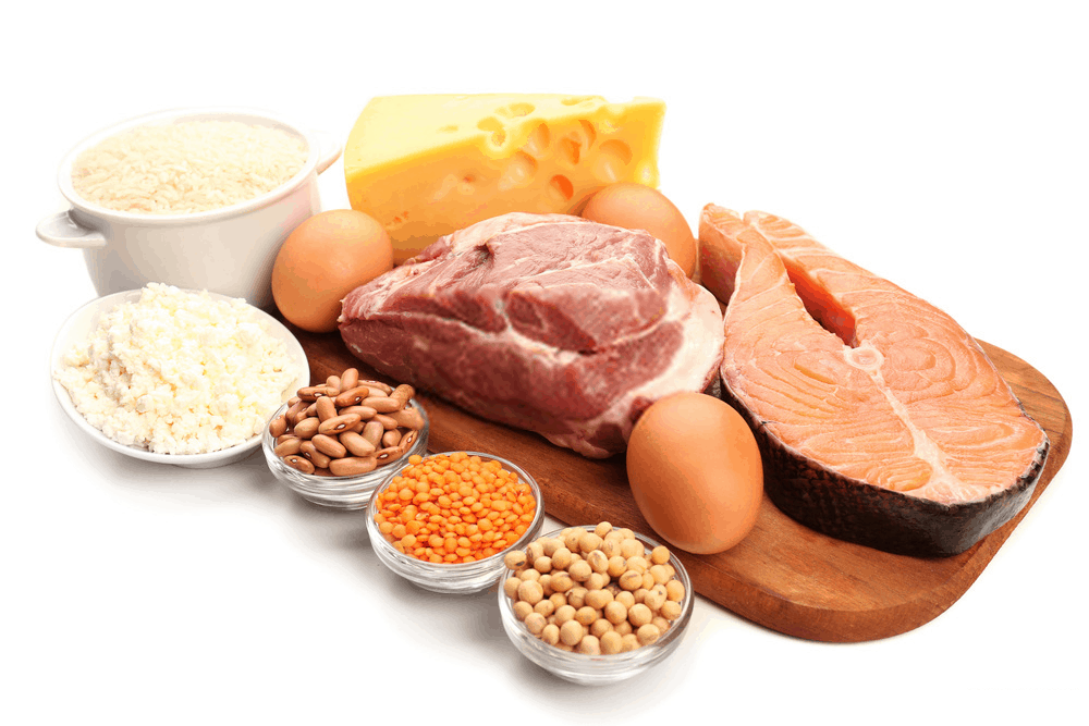 Food high in protein sources