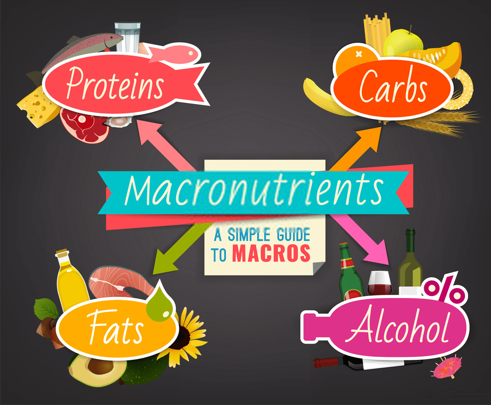 Macronutrients analysis