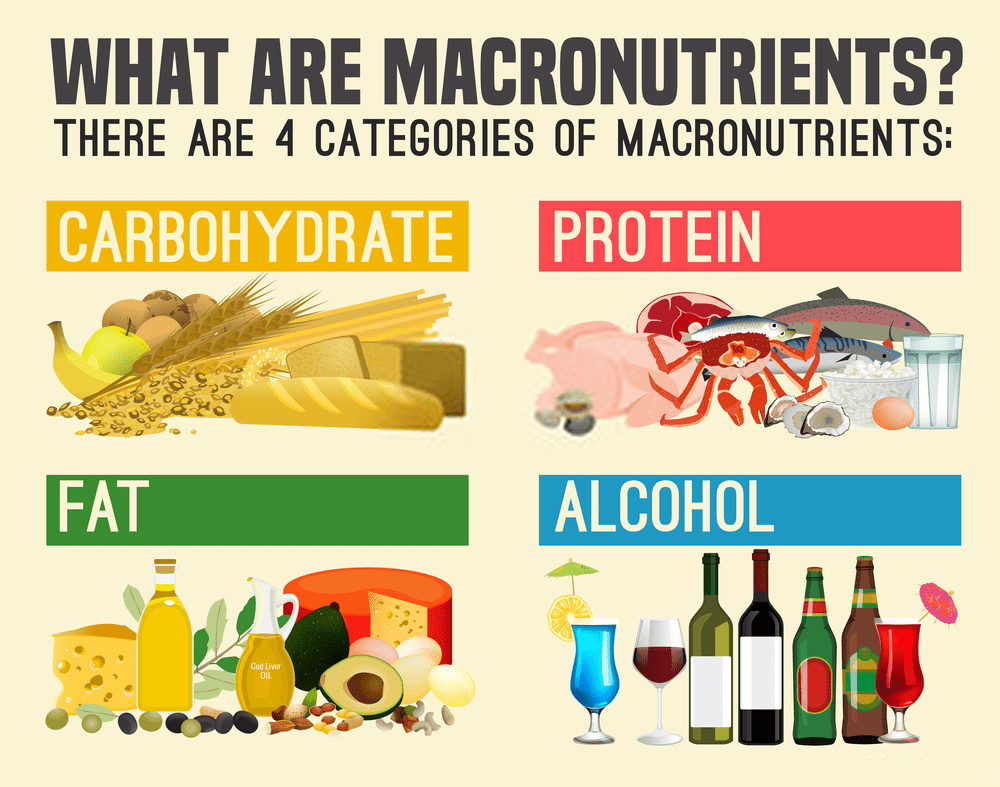 Macro Calculator - The 4 categories of macronutrients