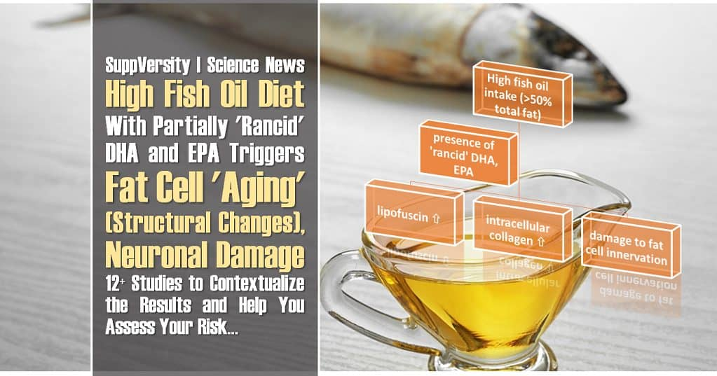 High Fish Oil Diet ➯ N3-Oxidation ➯ Fat Cell 'Aging', Plus Neuronal Damage   12+ Studies to Contextualize the Results