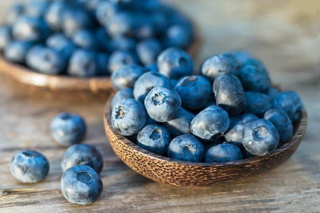 Top 5 Foods to Fight Stress