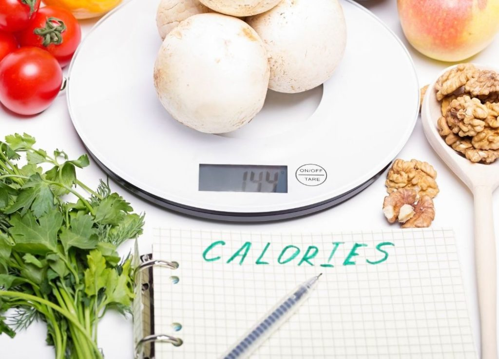 Meal Calorie Calculator - counting calories