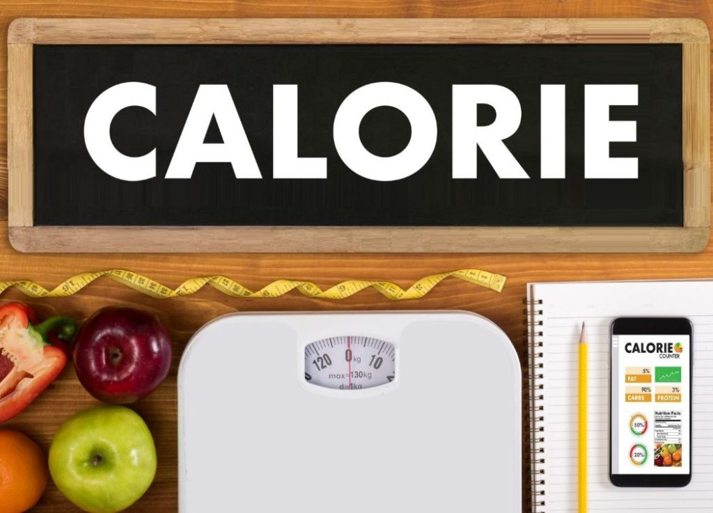 Main aspects of Meal Calorie Calculator