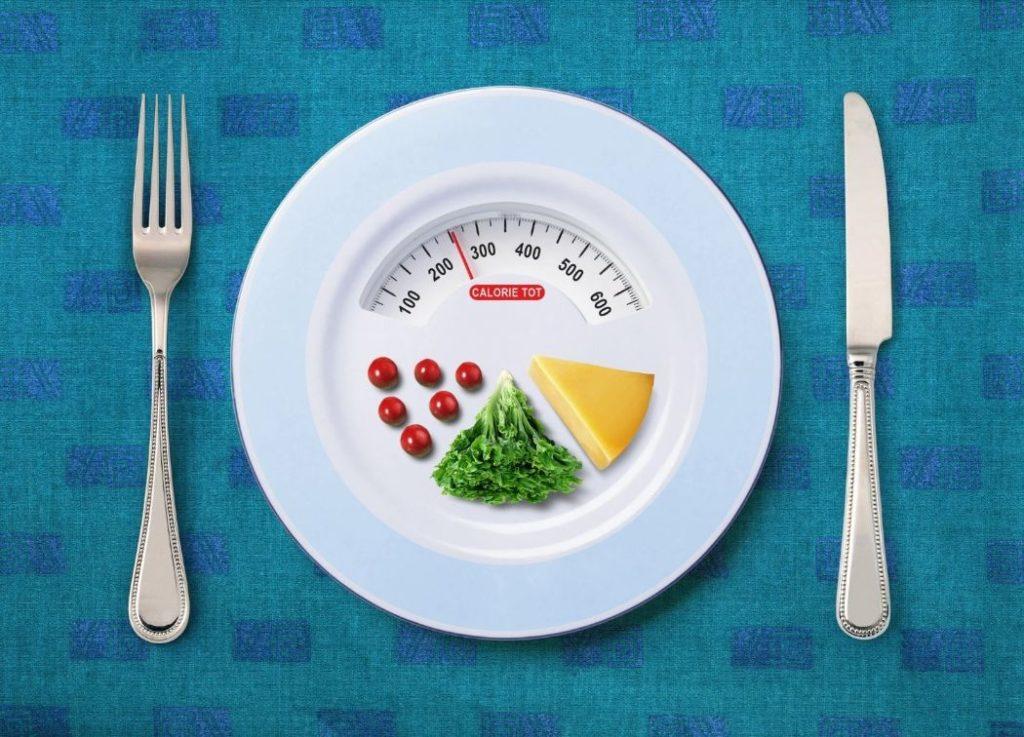 Meal Calorie Calculator