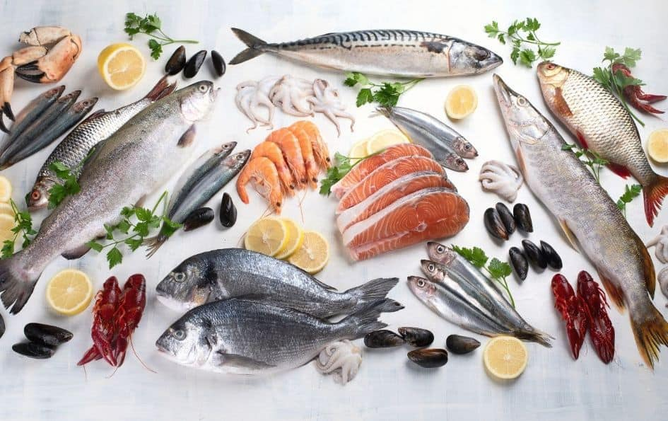 Most recommended fish due to their low mercury content
