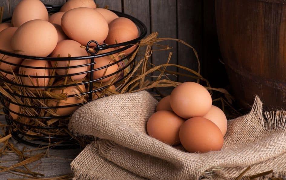 Eggs on the ketogenic diet