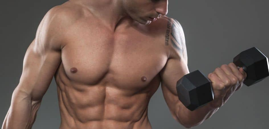 training on an empty stomach facilitates energy supply to the muscle