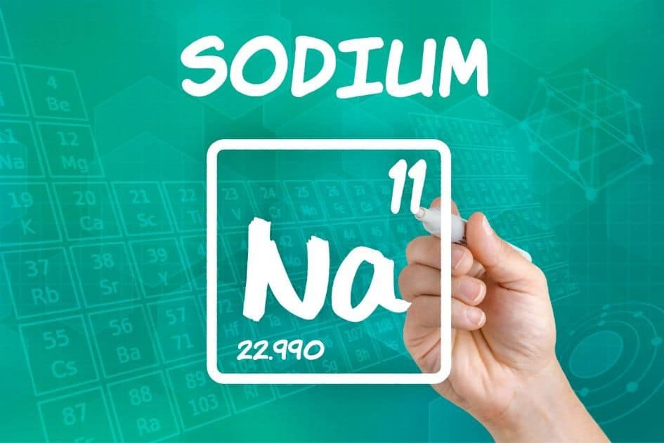 The importance of sodium to the human body