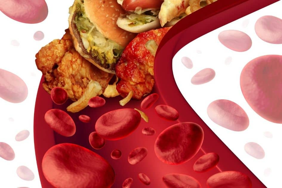 what are lipoproteins?