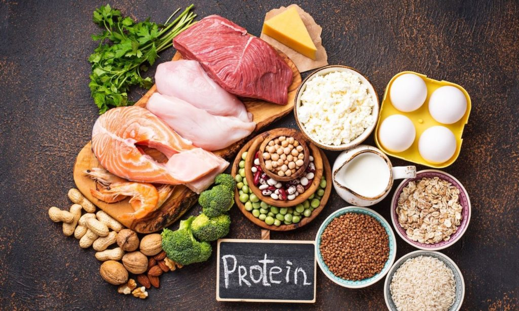 Choosing a diet high in protein, high in fat, and low in saturated fat is your best option
