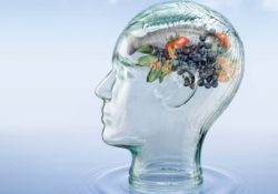 How a vegan diet can affect your intelligence
