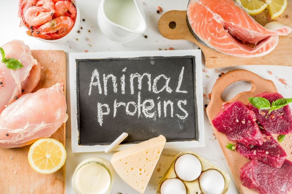 The best source of animal protein is the red meat variety