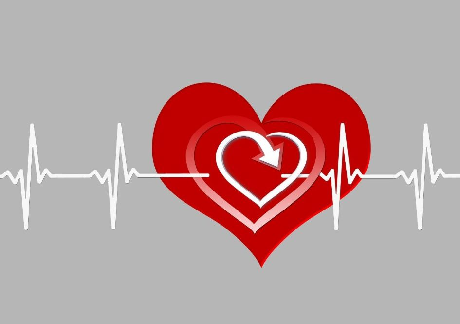 Heart rate training is one of the Primary Training Methods of Running