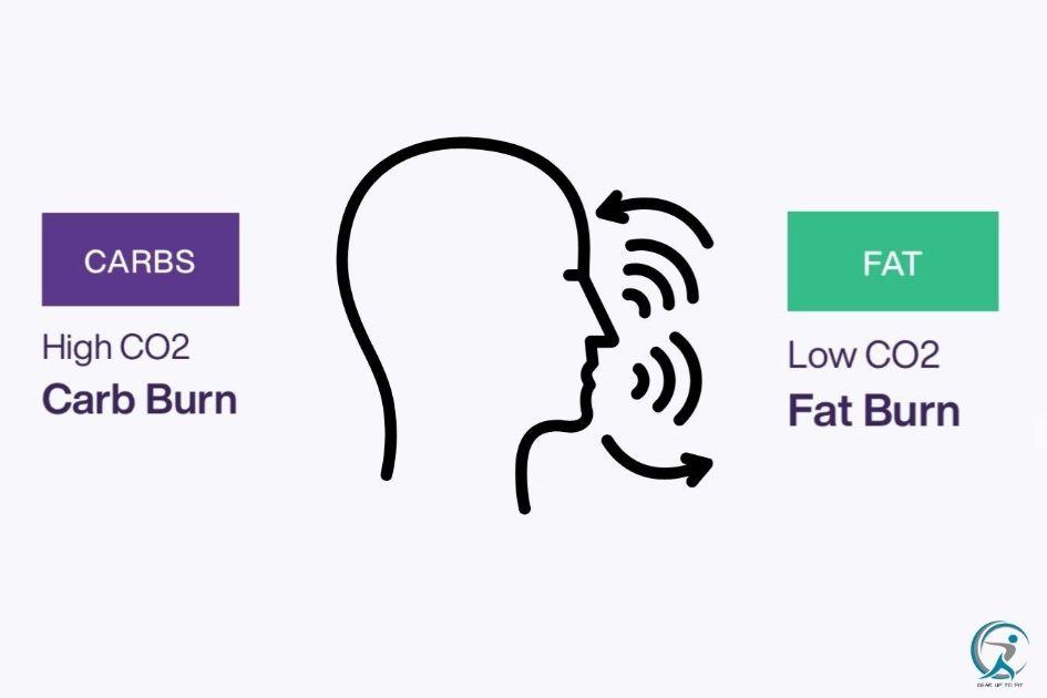 The Lumen app tracks a user's breathing patterns