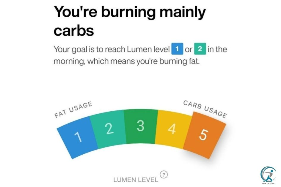 Lumen measures your Fuel Source and helps you Improve Your Metabolic Flexibility
